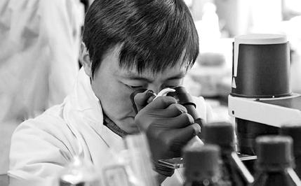 世界首个哺乳动物细胞图谱 在浙大诞生