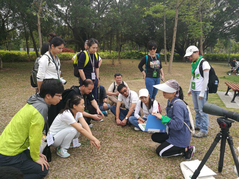 """创新规划全民参与 深圳生态文明建设按下""""加速键"""""""