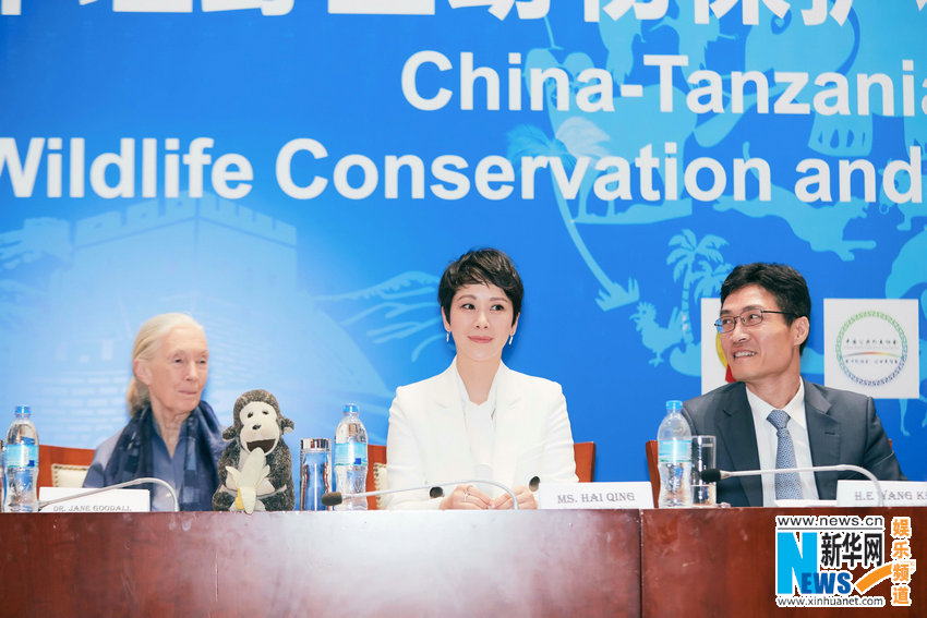 海清获坦桑尼亚野生动物保护形象大使荣誉