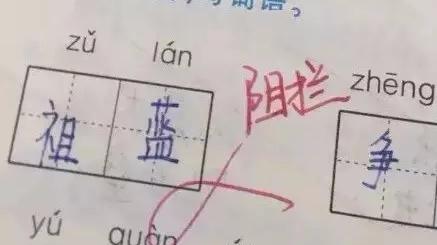小学生拼音填词将阻拦写成祖蓝 王祖蓝:没毛病啊