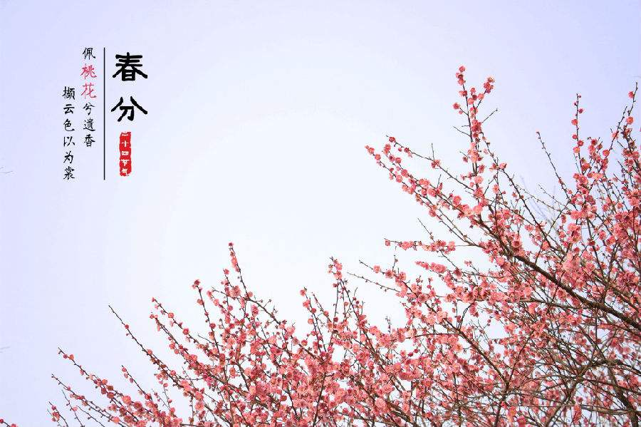 """3月21日零时15分""""春分"""":春色惹人醉,杨柳万千条"""
