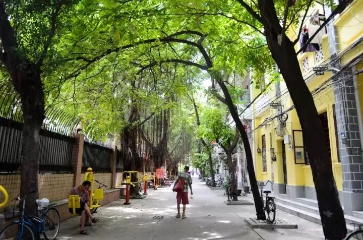 图二:图为改造后的越秀区崔府街巷内