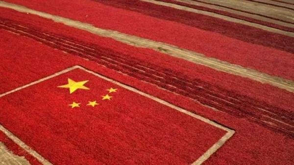 《厉害了,我的国》 | 西藏10分钟 每一帧都真实动人