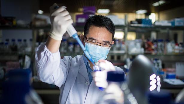 """广东研发""""魔法药水"""",安全高效制备干细胞成可能"""