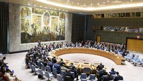 安理会未通过谴责对叙军事打击决议草案
