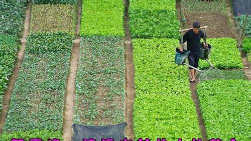 广东省清远市:探索农村土地整合促进适度规模经营