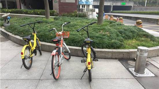 """共享单车将有""""违停罚单"""",?在禁停区域停车超过三次将被罚款"""