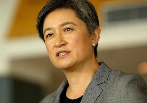 """澳前华裔财长:特恩布尔政府""""拙言笨语""""令中澳关系趋紧"""