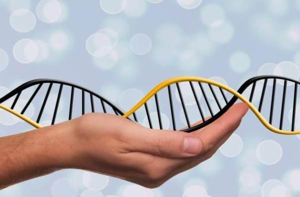 《科学》新研究:自闭症或因继承父亲基因突变,而非承自母亲
