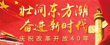 壯闊東方潮  奮進新時代——慶祝改革開放40年
