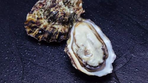顾客吃生蚝染罕见病险瘫痪 餐厅被判赔670万美元
