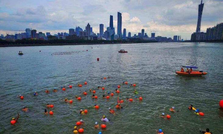 广州连续13年举办横渡珠江活动 本周五约2000人参与