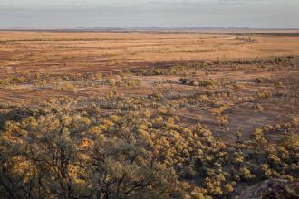 亲历澳大利亚旱区:牧草枯黄 农民渴望水和草料
