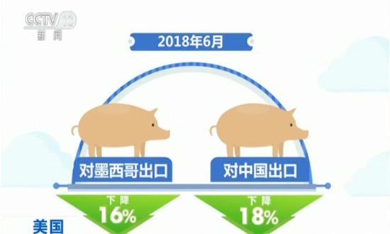 美遭多国反击!美国6月份的猪肉出口下降12%