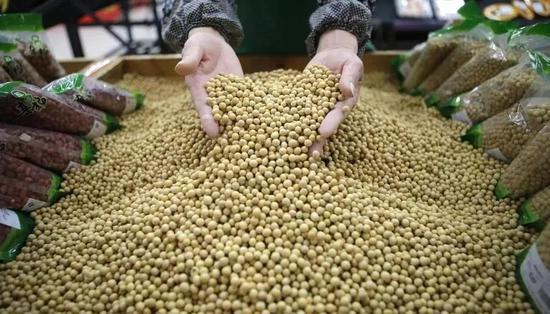 关键时刻 俄愿出租百万公顷远东农田帮中国种大豆