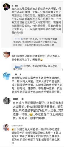 網友評價陽澄湖大閘蟹假貨為患的現象。來源:網絡截圖