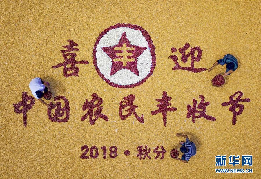 共话丰收 喜迎首个中国农民丰收节