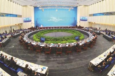 """""""国际高参""""点赞进博会:为上海城市发展带来美好图景"""