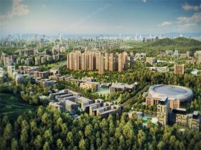 广州5宗宅地揽金41亿 最贵1.2万元/平方米