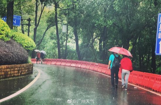 无惧风雨!今晨雨势较大道路湿滑 仍有不少人登山
