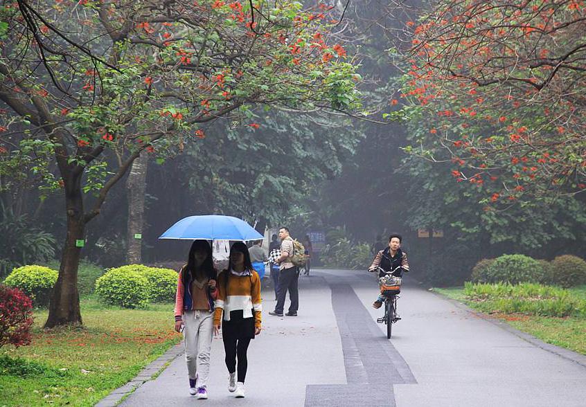 周六前广州人可以一直穿短袖!新一轮冷空气周末来袭