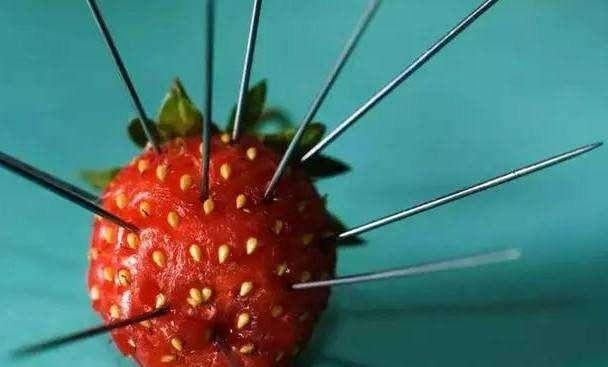 """澳""""草莓藏针案"""":涉事女子获保释 藏针出于报复"""