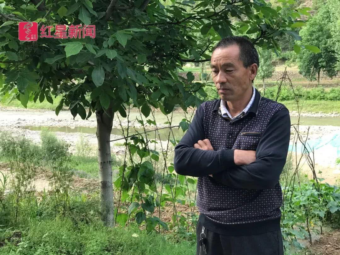 """河南""""非法采伐兰草案""""再审 秦运换等4人被判无罪"""