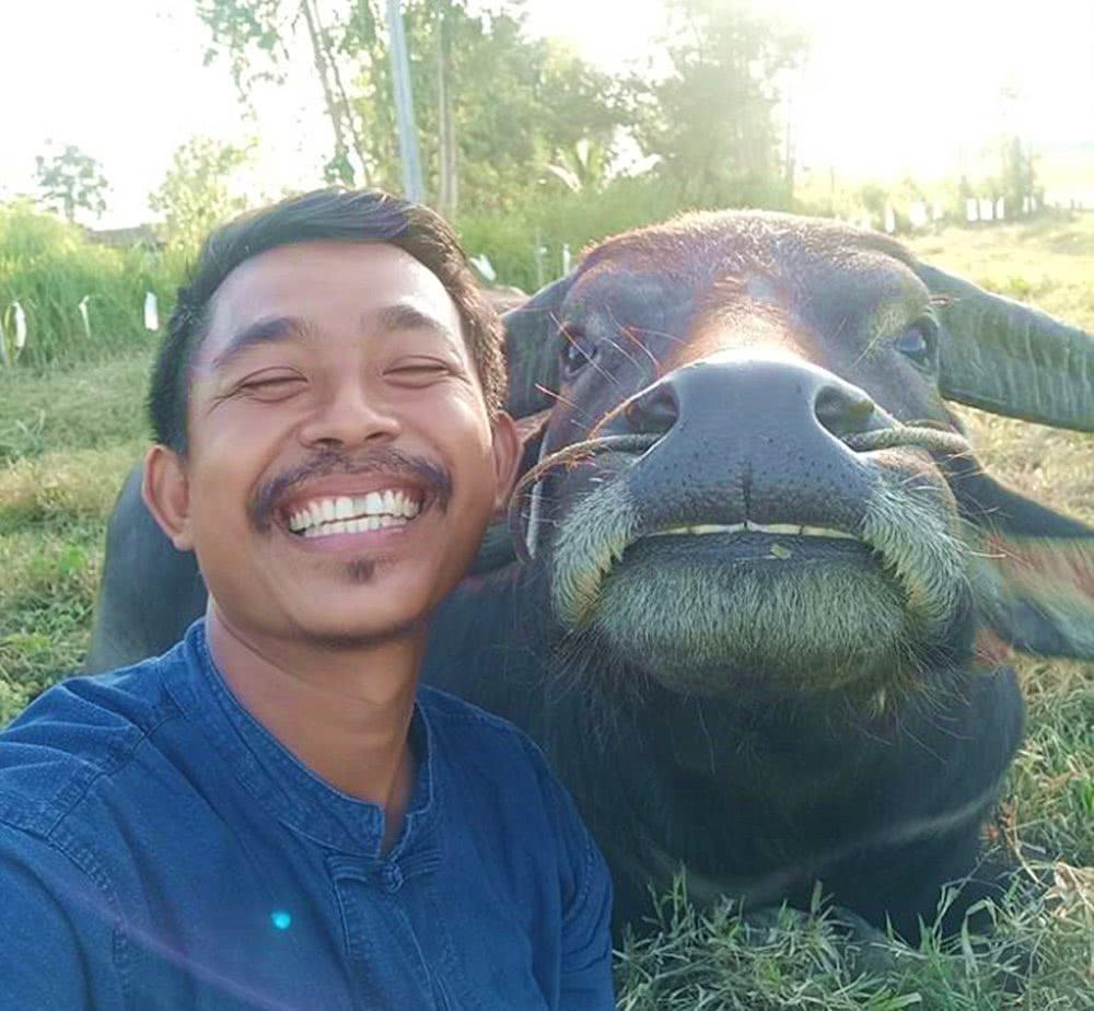 """泰国男子与水牛拍超甜""""情侣照""""蹿红,网友:牙比我还白"""