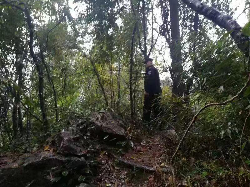 留学归来女生在西湖景区失联 遗体在悬崖下被发现
