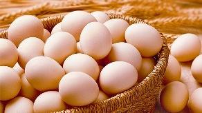 13批次不合格食品被公布 有土鸡蛋查出兽药残留