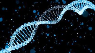 为了抓坏人,应该把每个人的基因录入数据库吗