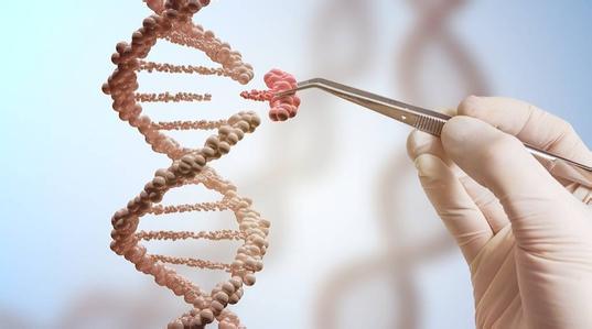 2018年十大科学突破:单细胞基因活性分析技术突破拔得头筹