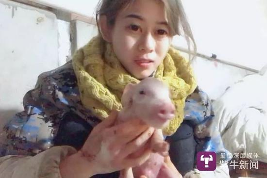 女孩养猪年入百万:会养到老 要做养猪界最好的兽医