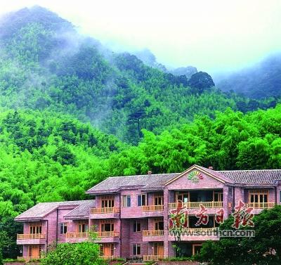 广东将大力培育森林旅游新业态 探索特色旅游形式