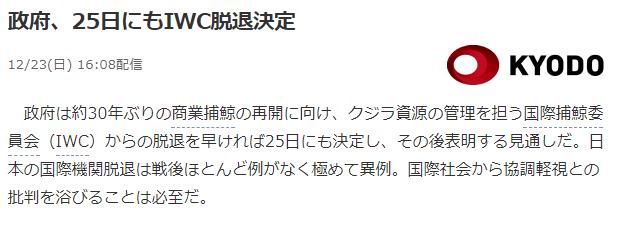 日本为执意捕鲸是否会退国际群? 日政府将于25日作决定