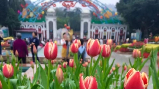 这个主题花展,全广州都在期待,即将推出