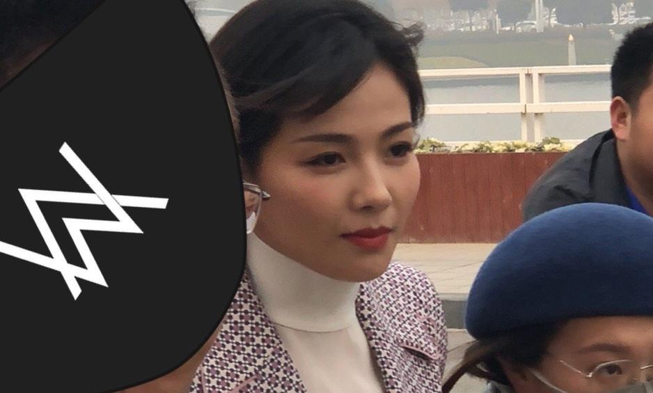 颜值在线!网曝刘涛登央视小春晚郑州分会场 2019-01-15 07:35