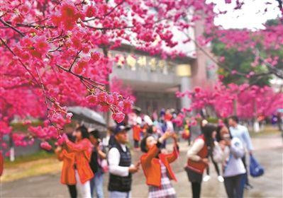 广东人究竟有多爱玩? 春节游遍全球403个城市