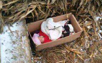 夫妇垃圾里捡弃婴视如己出 养大后却得到这样回报