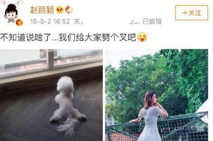 """唐艺昕否认怀孕再现""""劈叉梗"""" 张若昀晒二哈问号"""