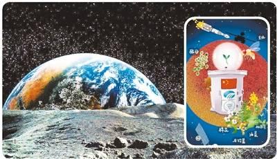 嫦娥四号生物实验揭秘:曾考虑过搭载乌龟去月球