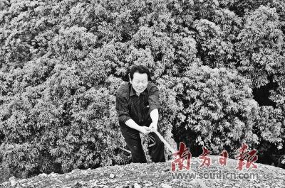 中山大学已故教授彭华:推动中国丹霞走向世界