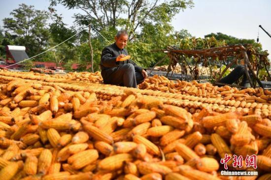 WTO发布美诉中国粮食补贴争端案专家组报告 中方回应