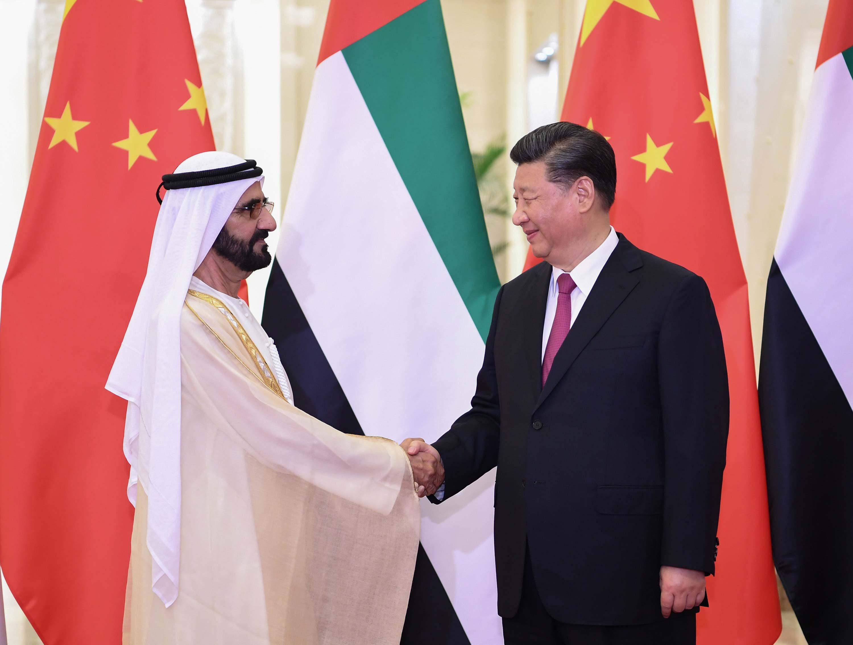 海城鸿尊永乐汇温泉电话,习近平会见阿联酋副总统兼总理 迪拜酋长