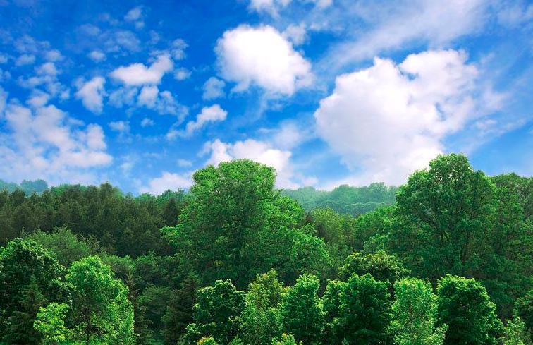 公民環保行動大調查 全民共同期盼:生態環境越來越好