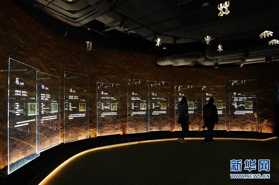 """(在习近平新时代中国特色社会主义思想指引下——新时代新作为新篇章·图文互动)(4)从世园会""""看""""中国绿色发展之路——写在北京世园会""""中国国家馆日""""到来之际"""