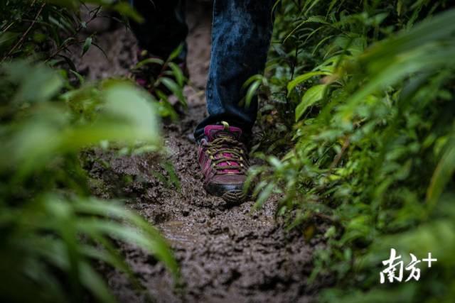 雨天,管延萍走在泥泞的山路上。