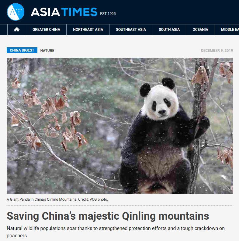 【中國那些事兒】秦嶺野生動植物數量不斷增長 外媒:國家公園建設助力珍稀生物保護