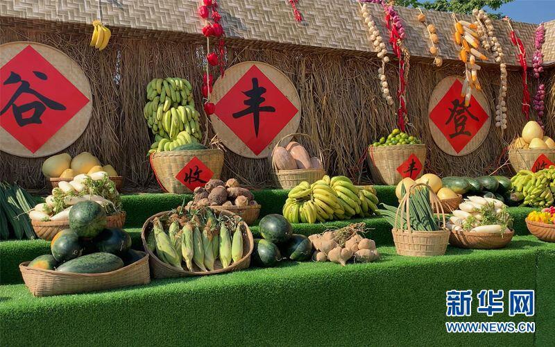 """錢江潮評丨牢牢把握重要農產品有效供給這個""""頭等大事"""""""