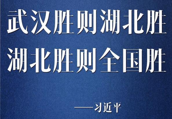 """湖北胜则全国胜!关于战""""疫"""",习近平这样说"""